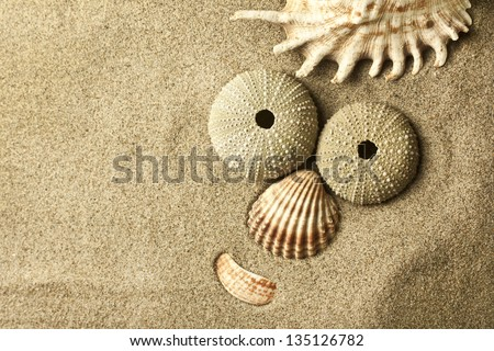 funny face in the sand - stock photo