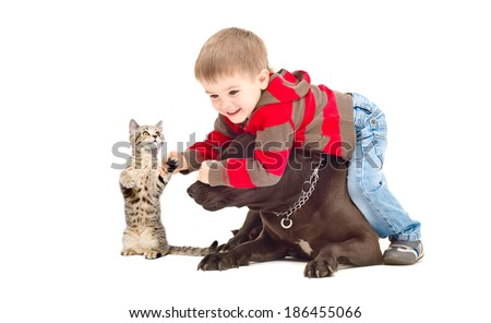 Funny game boy,  dog and  kitten - stock photo