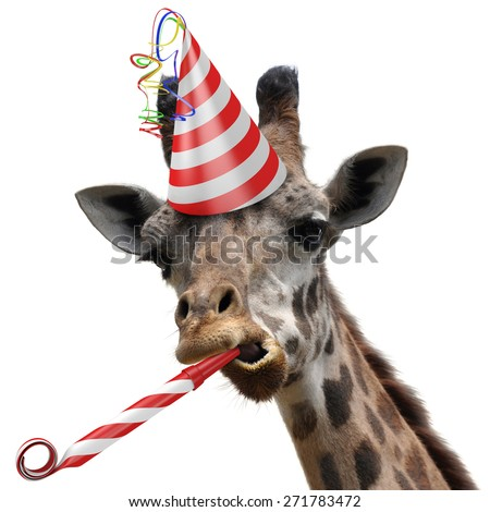 Funny giraffe party animal making a silly face and blowing a noisemaker - stock photo