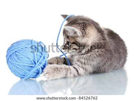Funny gray kitten and ball of thread isolated on white - stock photo