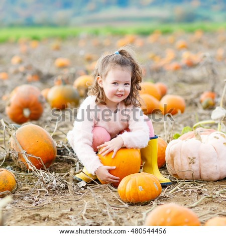 Funny little kid girl having fun with farming on a pumpkin patch. Traditional family festival with children, thanksgiving and halloween concept. Cute farmer with big vegetables.