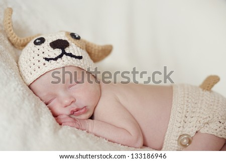 funny  little newborn wearing dog costume - stock photo