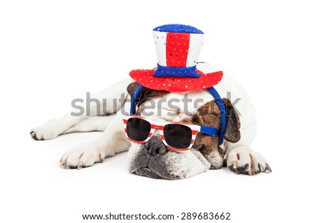 Funny photo of a Bulldog breed dog laying down wearing red, white and blue sunglasses and hat - stock photo