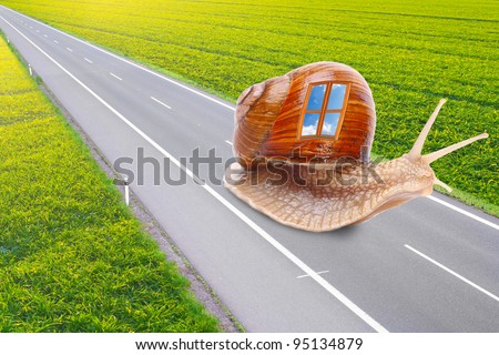 Funny picture of a speedy snail with mobile home. Easy travel metaphor. Traveling business concept. - stock photo