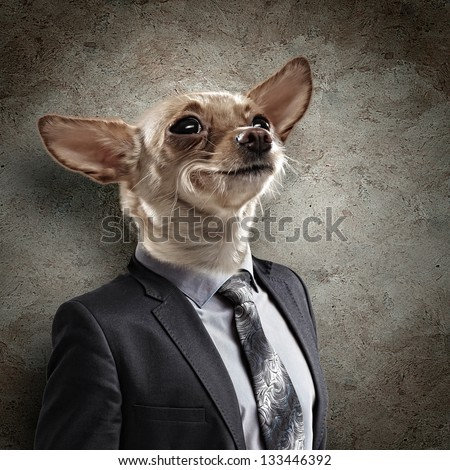 Funny portrait of a dog in a suit on an abstract background. Collage. - stock photo