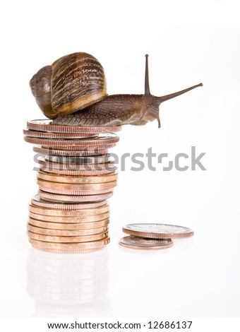 Funny snail sitting on a pile of dollars - stock photo