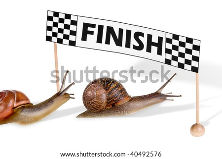Funny snails arriving at the finish of a race - stock photo