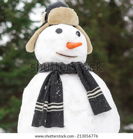 Funny snowman in forest - stock photo