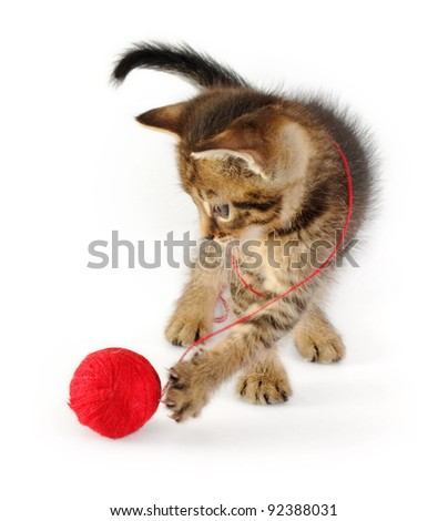 funny tabby kitten with red clew, isolated on white - stock photo