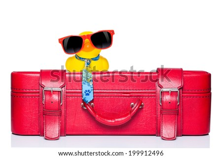 funny yellow plastic rubber  duck on top of luggage - stock photo