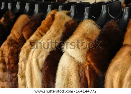 fur jackets  - stock photo
