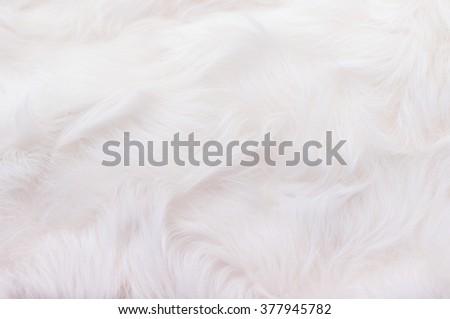 fur, wool - stock photo