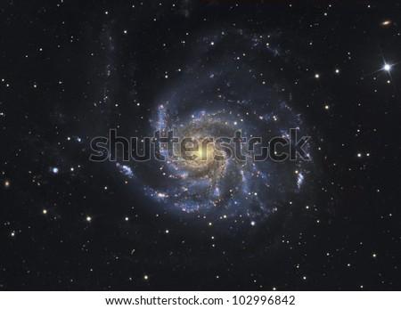 Galaxy M101 in Ursa Major - stock photo