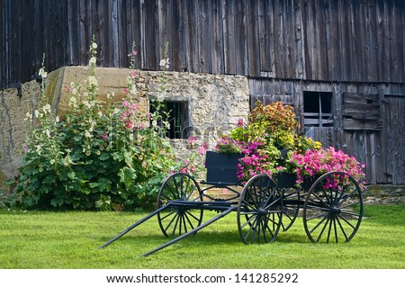 Galena Barn An old weathered barn on the outskirts of Galena forms  a backdrop for an antique wagon filled with flowers.Jo Daviess County, IL. - stock photo