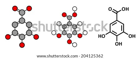Gallic acid (trihydroxybenzoic acid) molecule. Present in many plants, including oak, tea and sumac. Both in the free form and is part of tannin compounds. Stylized 2D renderings and skeletal formula. - stock photo