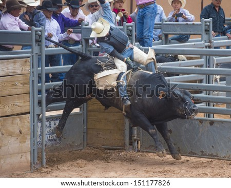 GALLUP , NEW MEXICO - AUGUST 10 : Cowboys Participates in a bull riding Competition at the 92nd annual Indian Rodeo in Gallup, NM on August 10 2013