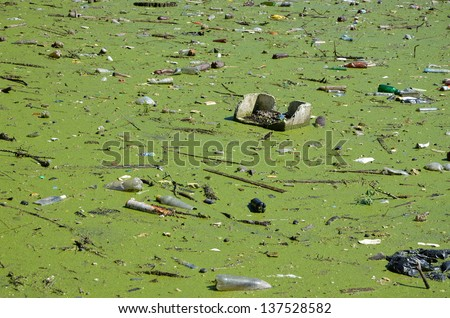 Asian polluted sea fucking pathetic