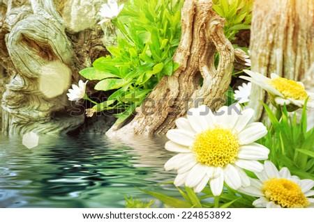 Garden - stock photo