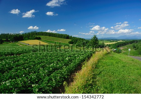Garden and landscape, north of Japan - stock photo