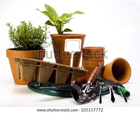 Garden background - stock photo