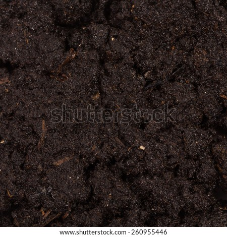 Garden beds of fertile soil close-up texture - stock photo
