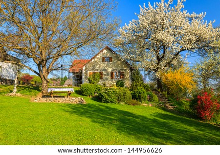 Garden blooming tree traditional house spring, Burgenland, Austria - stock photo