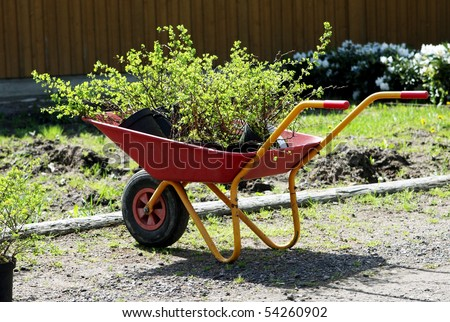 garden cart with seedlings