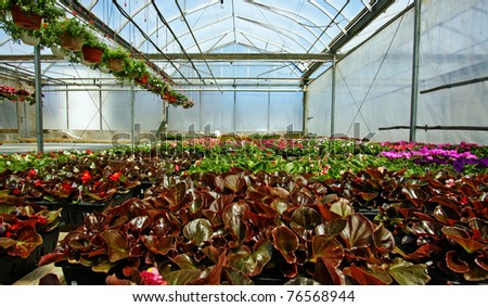 Garden Center - stock photo