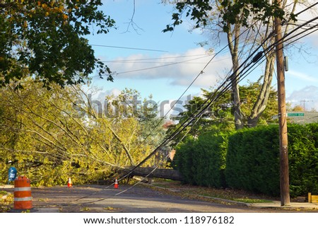 GARDEN CITY, NY - OCT 31: Fallen tree and power lines after Hurricane Sandy in Garden City, NY on Oct 31, 2012.  Sandy struck New York on Oct 29th leaving the area in a State of Emergency. - stock photo