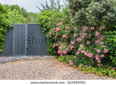 Garden corner whit metal doors and green leaves - stock photo