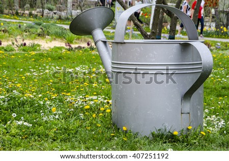 garden design  watering can