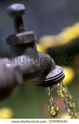 Garden faucet, water tap, running and dripping water with refraction of yellow flowers in water drop. - stock photo