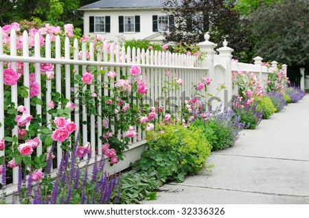 Garden Fence And Gate With Pink Roses, Salvia, Catmint, Ladyu0027s Mantle  Bordering House