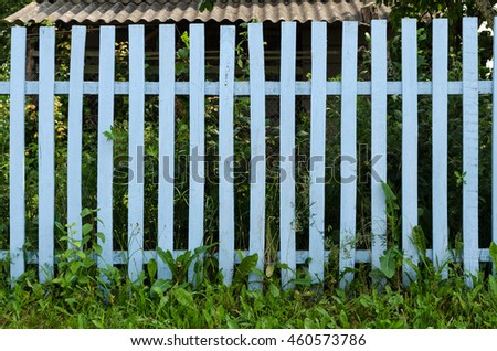 garden fence / Fresh spring green grass over wood fence background