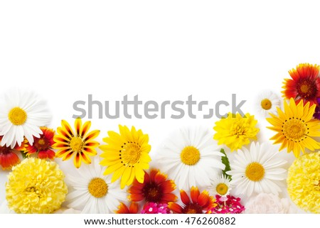 Garden flowers frame. Isolated on white background. Backdrop with copy space