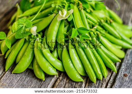 Garden Fresh Organic Sugar Snap Peas - stock photo
