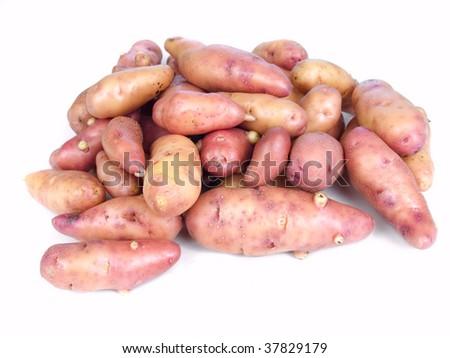 Garden fresh rose fingerling potatoes isolated on white - stock photo