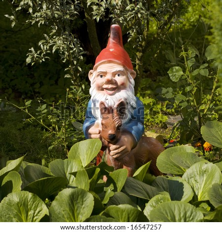 garden gnome - stock photo