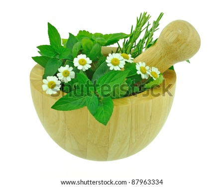 Garden Herbs - stock photo