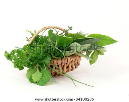garden herbs to flavor - stock photo