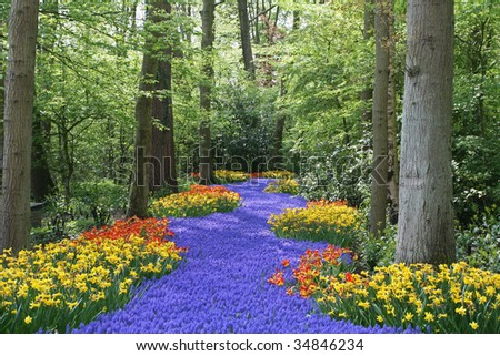 garden landscape with river made of flowers in the wood - stock photo