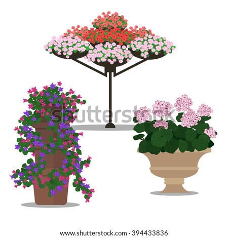 Garden landscapes, summer and spring flower bed. Flat illustrations