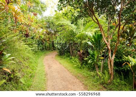 Garden Eden Maui Hawaii Stock Photo (Royalty Free) 558296968 ...