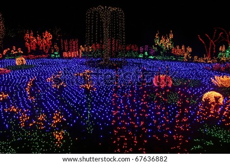 Garden of Lights at Bellevue Botanical Gardens in Washington State