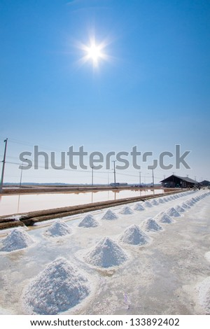 Garden of salt with sun