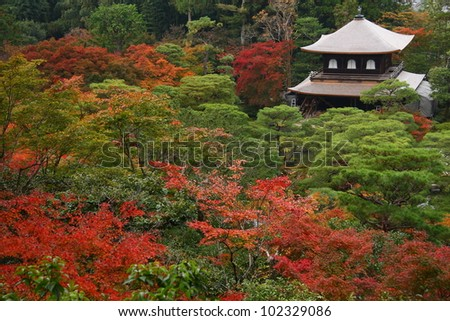 Garden of the Silver pavilion in Kyoto in autumn - stock photo