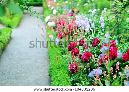 Garden Path with Peonies - stock photo