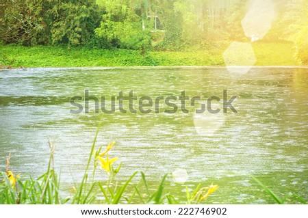 garden pond with decking - stock photo