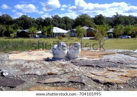 Garden Statues Of Two Birds Or Two Ducks. Worn Off Terracotta Statues Of  Birds Sitting