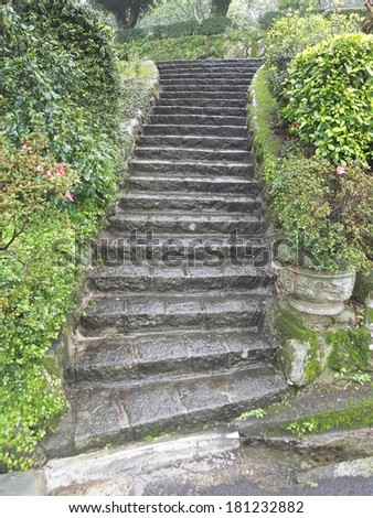 Garden stone staircase covered in moss and surrounded by green foliage. - stock photo